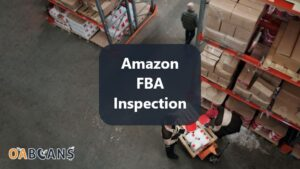 Workers Doing FBA Inspection